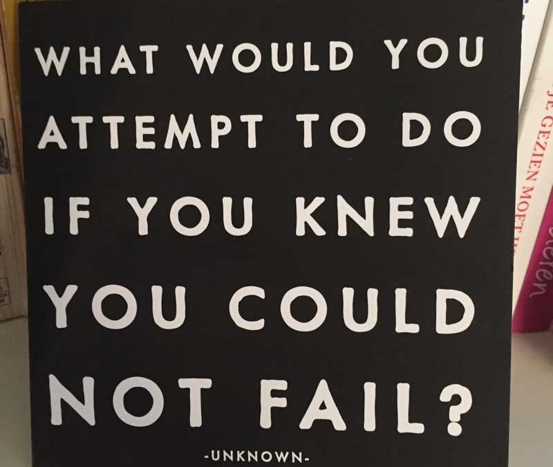 TT14: What would you attempt to do if you knew you could not fail?